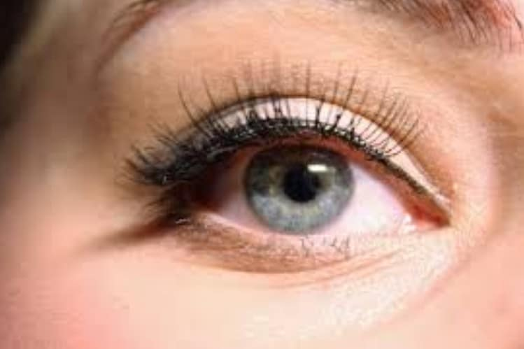 Eaylash Extension Courses in Los Angeles